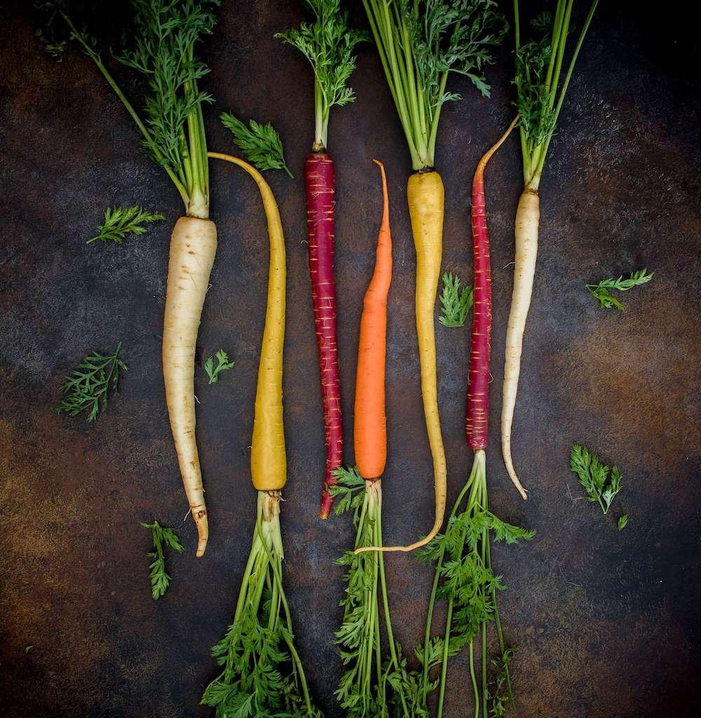 """Pflanzenwissen vermitteln oder was mache ich eigentlich mit dem """"wilden"""" Gemüse?"""